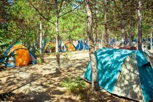 палатки под киевом